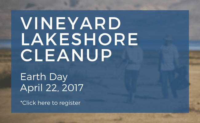 Lakeshore Cleanup flyer